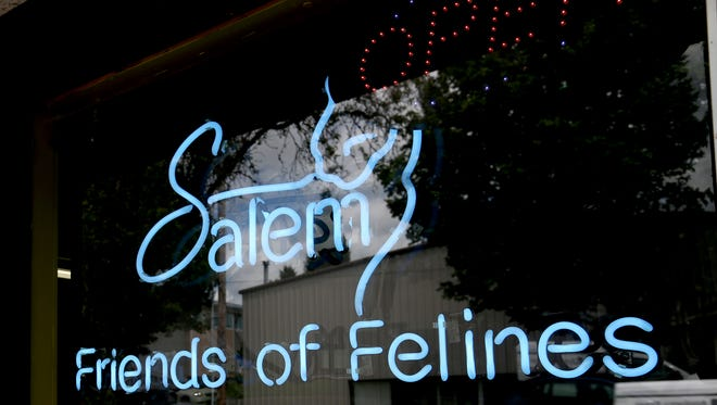 Salem Friends of Felines