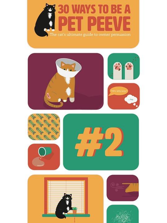 Graphic Design Mtsu