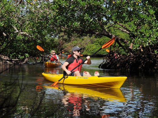 Kayakers take a guided tour in Rookery Bay Reserve.