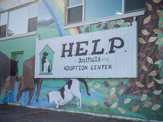 A mural on the exterior of H.E.L.P. the Animals pet
