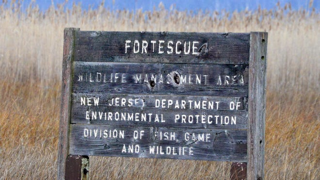Fortescue sign.