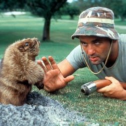 'Caddyshack': 5 wild things we learn about the Bill Murray comedy in new tell-all book