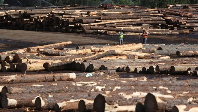 Workers inspect incoming timber at the Sierra Pacific plant in Anderson.