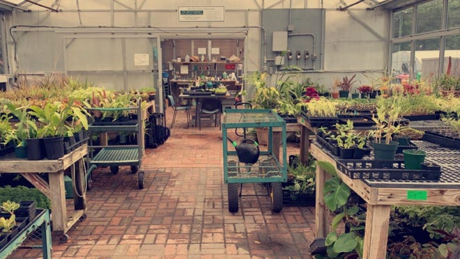 The Ability Garden Greenhouse at the New Hanover County Arboretum serves as the winter classroom for therapeutic horticulture program.