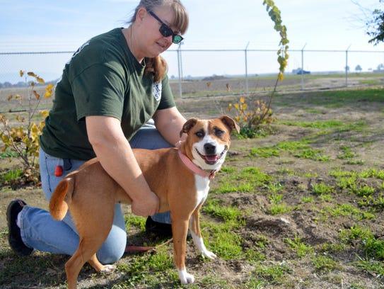 Valley Oak SPCA volunteer Carol Stevens, took Macie