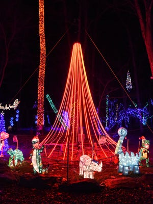 A light tree encompasses another part of Tim Gay's Christmas light display at home in Union Vale.
