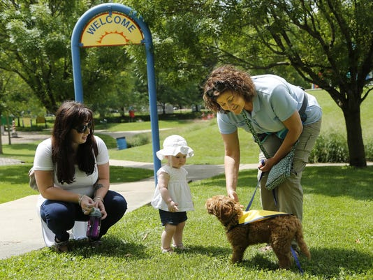 Meet Charlie An Autism Service Dog In Training