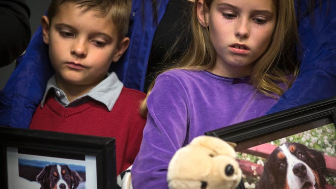Ashton and Alexis Collins hold photos of their dogs at a press conference Tuesday. Both dogs died at the Green Acre kennel.