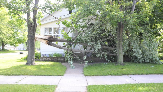A tree fell on a home's porch at the intersection of High Street and Eighth Avenue during an early morning storm Monday. Thousands of customers were without power as trees fell on power lines across the area, according to officials.