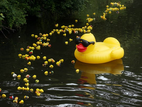 9th annual Great Denville Duck Race at Gardner Field hosted by the Denville Sunrise Rotary Club. Proceeds benefit many charitable projects sponsored by the club. June 17, 2017, Denville, NJ.