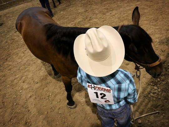 Horse trainer Kirk Ferris gets ready to show off Judd the Wonder Stang during the Extreme Mustang Makeover competition at the Reno Rodeo on June 19, 2016.