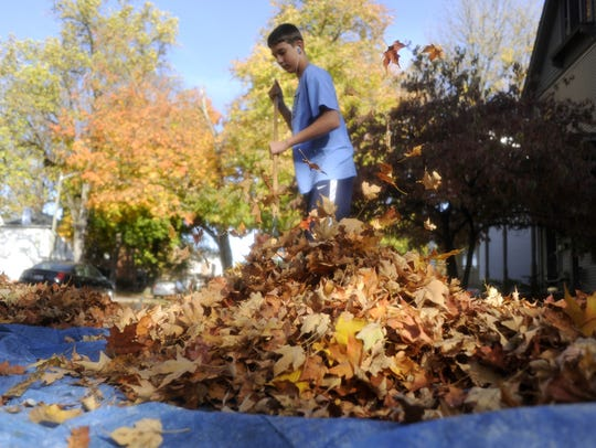 Sean Lucas rakes leaves in his family's yard on Tuesday