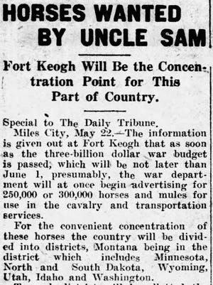 """Article titled """"Horses Wanted by Uncle Sam"""" in the May 23, 1917, edition of the Great Falls Daily Tribune."""
