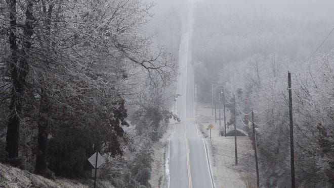 Ice coats trees lining Farm Road 34 in northern Greene County on Friday.