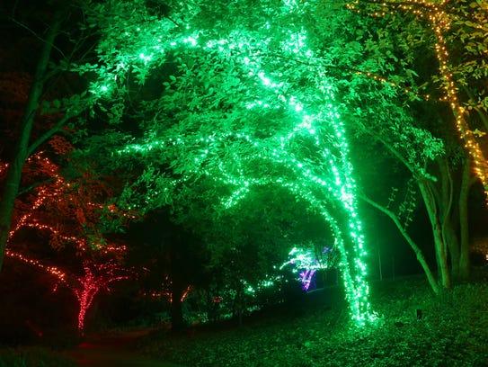 Part of the holiday lights display at Cheekwood.