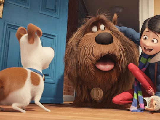 """It's a dog-meet-dog world in """"The Secret Life of Pets."""""""