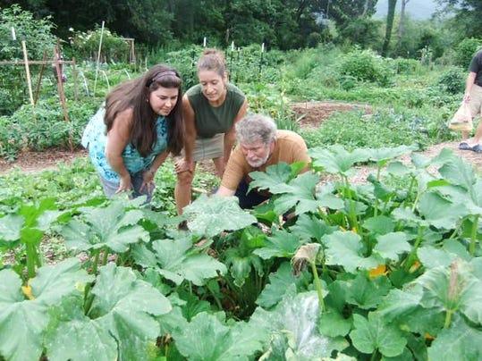 BMN 033116 Organic gardening