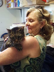 Tonka, a cat, was adopted during the Clear the Shelters