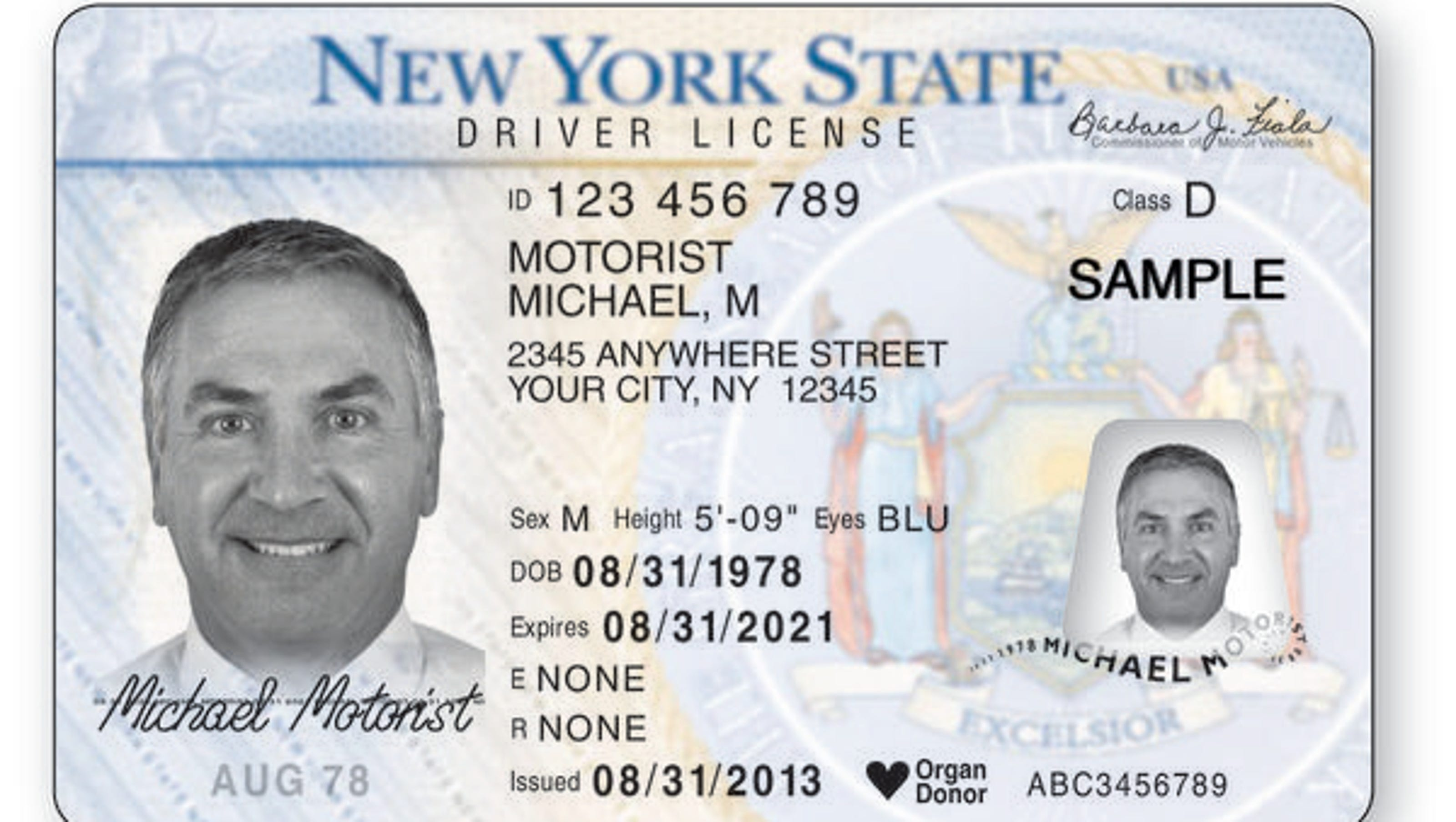 Driver's licenses for undocumented immigrants getting closer to reality in New York