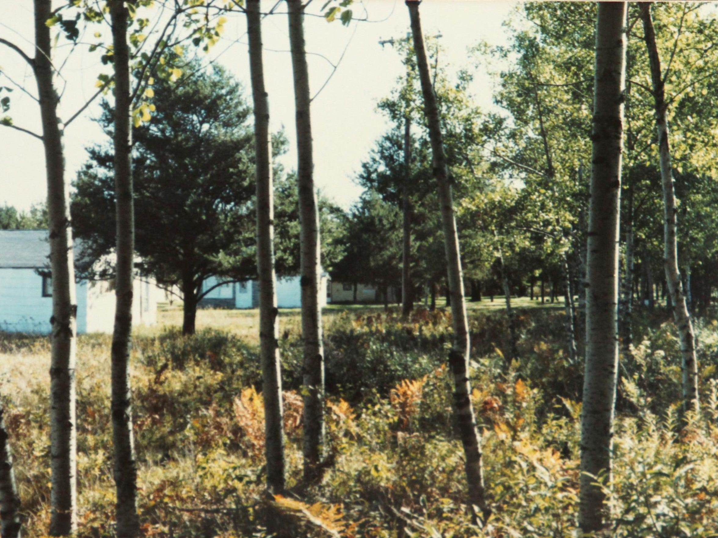 The white cabin in Gladwin where Ronald Lloyd Bailey molested and murdered 13-year-old Shawn Moore, of Green Oak Township, in 1985 is seen here through the trees.