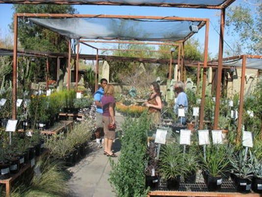 636252008360113852-Living-desert-plan-sale-FILE-by-Gina.jpg