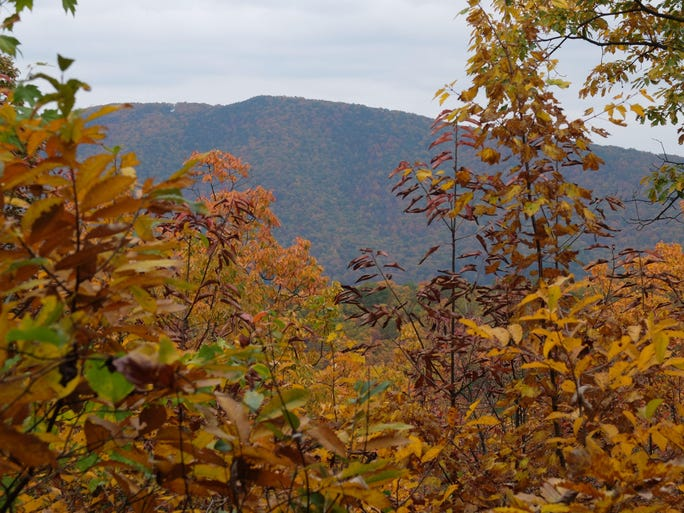 Majesty And History In The Blue Ridge Mountains