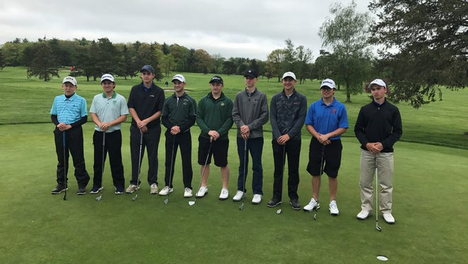 This group will represent Section 4 in June 3-4 state golf championships.