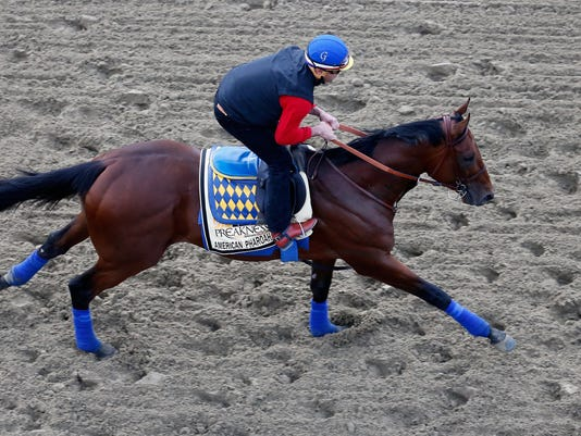 140th Preakness Stakes - Previews