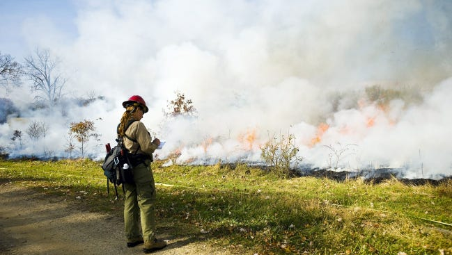 A National Park Service fire specialist observes a section of a prescribed burn at Gettysburg National Military Park at Synder Farm on Oct. 30, 2013.