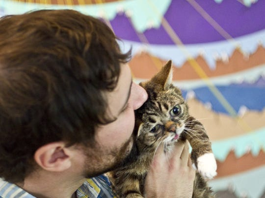 Mike Bridavsky adopted Lil Bub, a special needs cat
