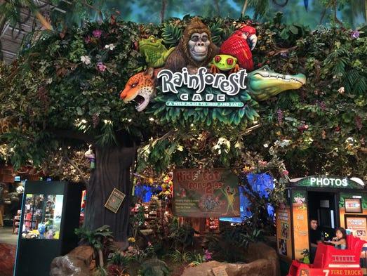 Rainforest Cafe Arizona