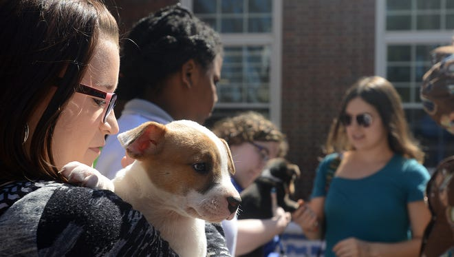 Emily Pilant, left, holds a puppy Tuesday during an Animal Afternoon at the University of Memphis Lambuth.