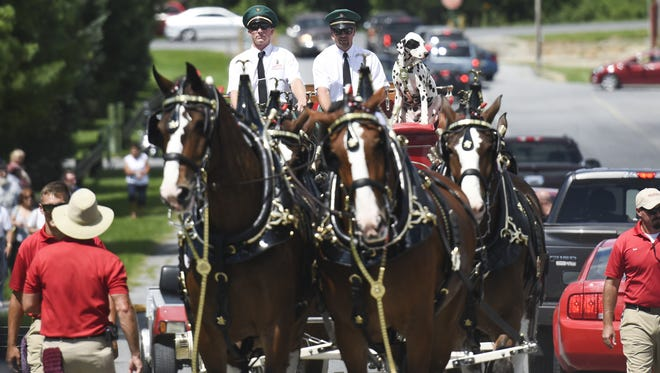 The Budweiser Clydesdales made an appearance at the America's 911 & Military Tribute Bike and Car Show at the Lebanon Valley Expo Center on Sunday, August 7, 2016.