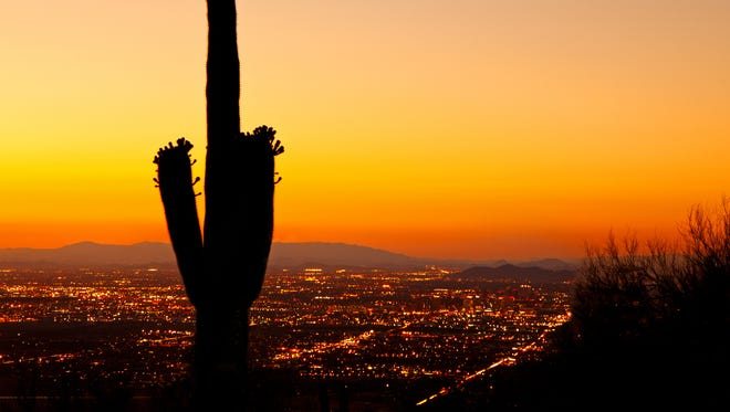 A golden sunset over downtown Phoenix city lights with a silhouette of a blooming Saguaro cactus.