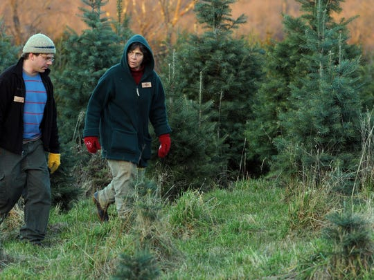 Where in the Hudson Valley to cut your own Christmas tree 2018