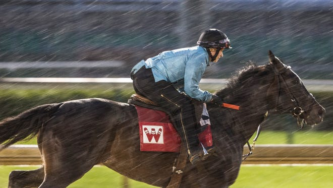 A horse trained in the rain at Churchill Downs. April 23, 2018