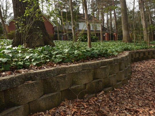 Landscaping features at a south Shreveport home.