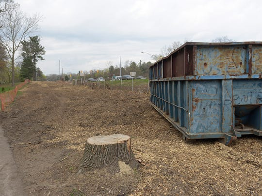 Removing the trees was needed for a sewer project.