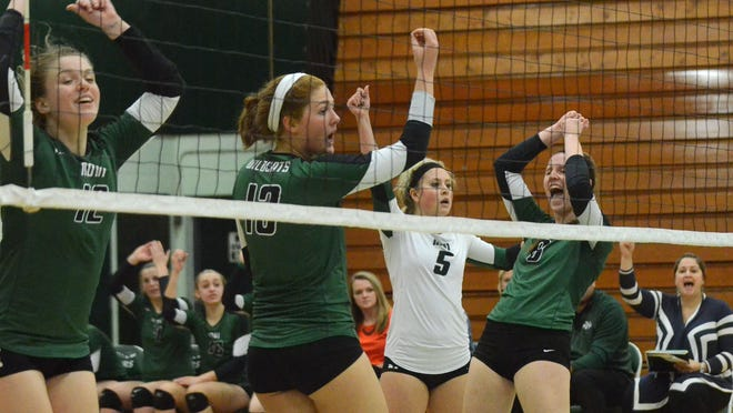 The Wildcats celebrate after Victoria Iacobelli (far right) tallied a point during the Class A regional semifinal victory over Fenton.