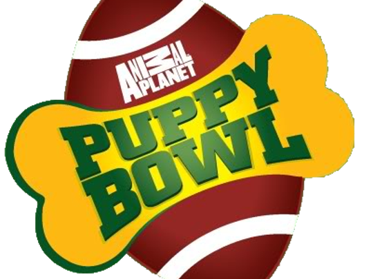 Puppy Bowl XII will be broadcast on Feb. 7 on Animal Planet.