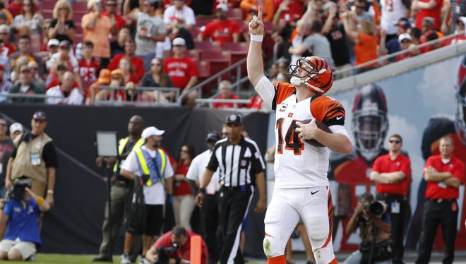 Cincinnati Bengals quarterback Andy Dalton (14) celebrates a rushing touchdown during the second quarter against the Tampa Bay Buccaneers played at Raymond James Stadium in Tampa, Florida Sunday.