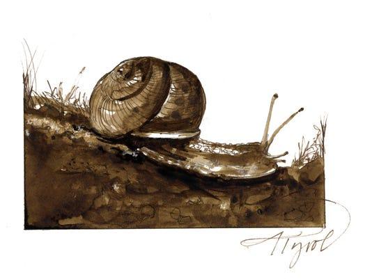 TOS_snail.jpg