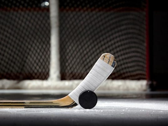 ice hockey_stick_puck_net