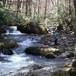 The Asheville-based Southern Appalachian Highlands Conservancy worked with Tennessee State Parks to conserve an access point.