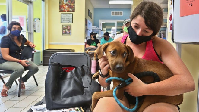 Sarah Logar, 23, spends time with her new dog Nike at the Humane Society of Tampa Bay.
