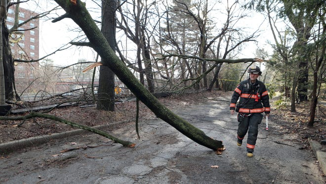 Yonkers Fire Lt. Paul Fialkovic checks out a large downed tree branch on some wires at  Brook Road and Moore Road in Yonkers, Feb. 25, 2016.