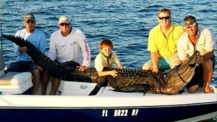 From left, Mike Guin, Terry Barnes, Cooper Lewis, Austin Lewis and Kenny Lewis pose for a photo after capturing and killing an 11-foot alligator in the Gulf of Mexico on Wednesday. (Not pictured but playing a role in the hunt is John Booker and Andrew Zierk)