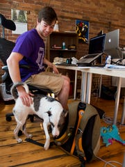 Josh Lee of Burlington, senior project manager at Daft Labs, takes a break to give his dog Lily some love at Daft's office downtown. Divvi is partnering with Daft Labs on their new mobile app.