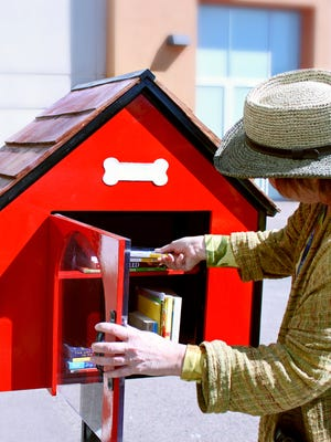 The dog house mini library in Chaparral Dog Park will be the first of at least more free libraries around the city.