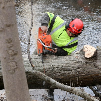 A worker from Ken's Tree Care cuts a fallen tree before